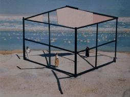 Dead Sea Sculpture